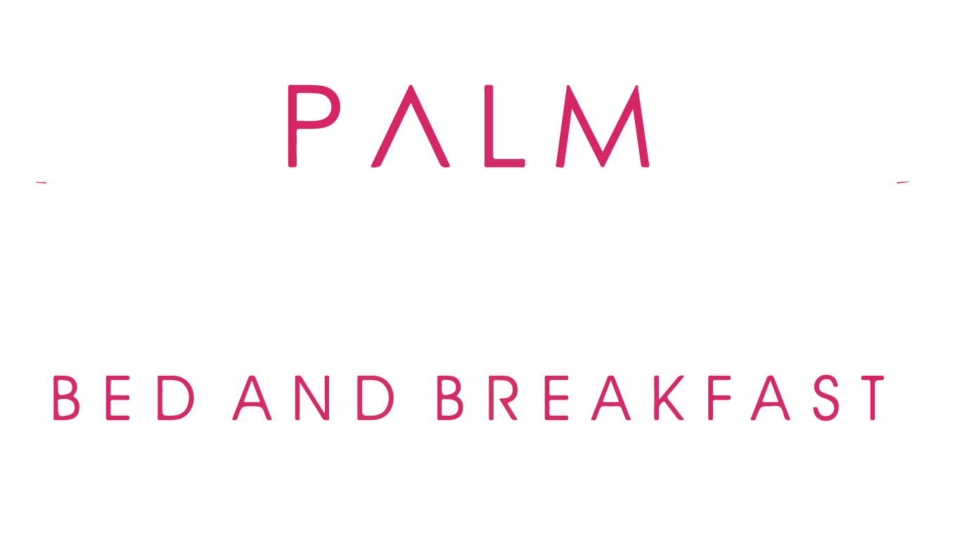 Palm Holidays